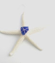 blue starfish_edited-1